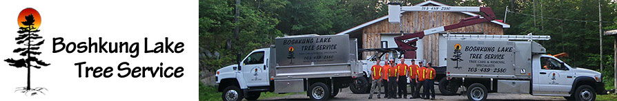 Boshkung Lake Tree Service logo, and Staff of certified arborists with bucket truck